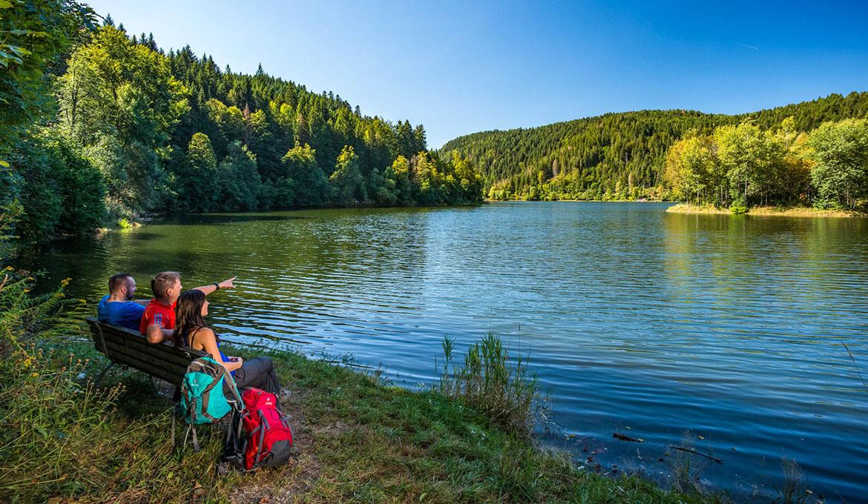 Wandern Pateint Hochrhein Albsteig